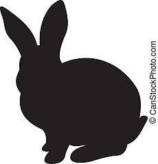 Bunny Rabbit Vector Illustration Isolated on white