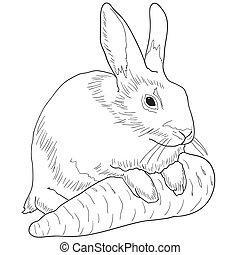 rabbit with a carrot