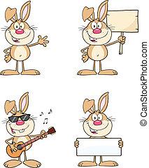 Rabbits Characters 1. Characters