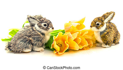 Rabbits with flowers tulips