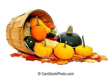 raccogliere, autunno