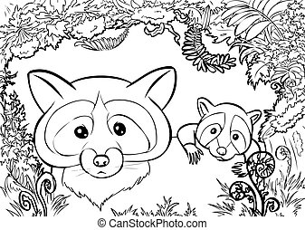 raccon family coloring