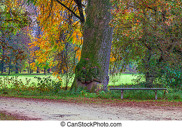 Racconigi park at autumn.