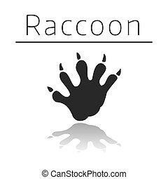 Raccoon animal track with name and reflection on white ...