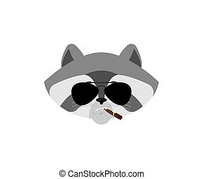 Raccoon Cool serious avatar of emotions. Racoon smoking cigar emoji. Coon strict. Vector illustration