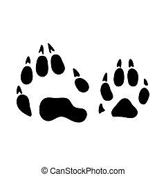 Raccoon Footprint