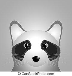Raccoon head.