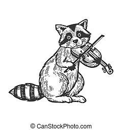 Raccoon playing violin engraving vector illustration....