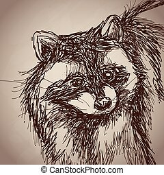 raccoon portrait forest hand drawing vintage