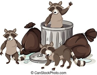 Raccoon searching trash for food