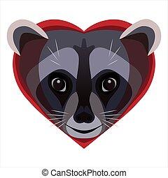 Raccoon with love
