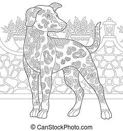 race, dalmatien, chien
