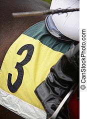 Race horse detail and jockey ready to run