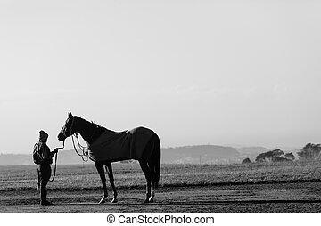Race Horse Groom Training Track