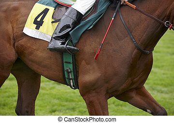 Race horse with number four running in the track. Horizontal