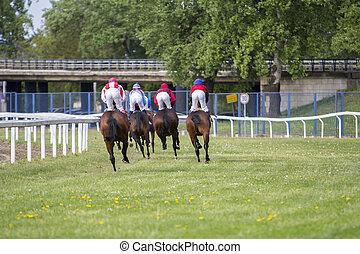 Race horses and jockeys during a race