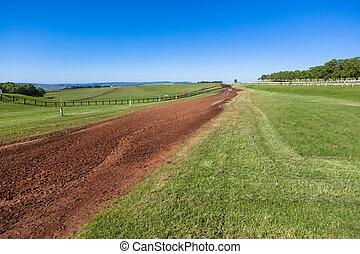 Race Horses Training Grounds