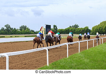 racetrack horse racing jockey approaching the finish line, sports with horses, riding a stallion