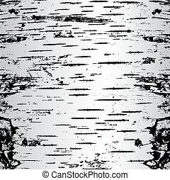 rachas, illustration., vetorial, vidoeiro, ladrar, texture.