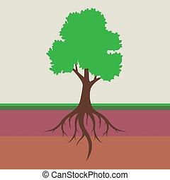 racine, feuilles, système, arbre