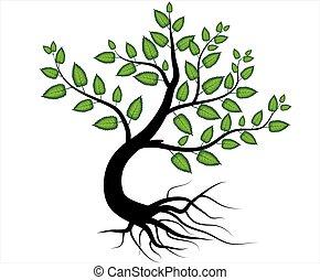 racine, résumé, vecteur, arbre