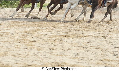 Racing horses in slow-motion