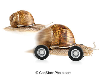 Snail on wheels dashing past another snail, concept shot suitable for various fields