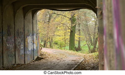Rack Focus in Grunge Park Tunnel - Rack focus in a grunge...