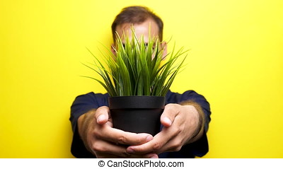 Rack focus man showing a pot with grass to the camear - Rack...