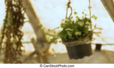 Rack focus to a hanging pot in a tent - A slow rack focus to...