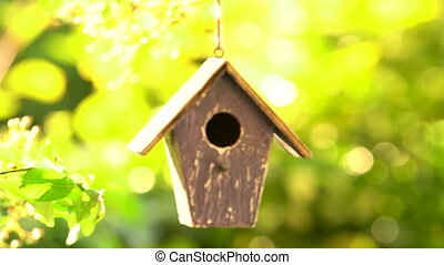Rack focus video clip of a bird house hanging in a tree in a...