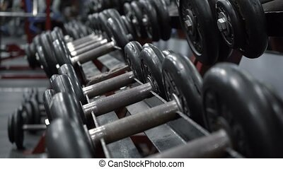 Rack with dumbbells in fitness gym
