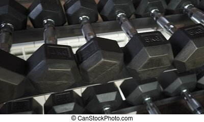 Rack with dumbbells in the gym