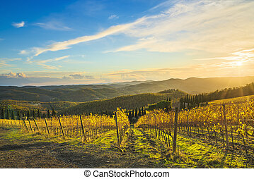 radda, in, chianti, weinberg, und, panorama, an, sunset., toscana, italien