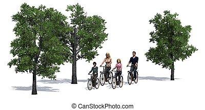 radfahren, familie, radfahrer, bäume, freigestellt, weiß, hintergrund