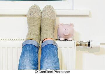 radiatore, donna, lei, piggy, su, piedi, warming, banca