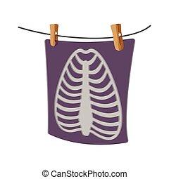 radiografía, costilla, humano, jaula, icono, caricatura