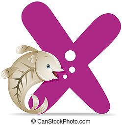 radiografía, x, pez