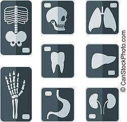 radiografías, icono