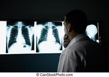 radiografías, trabajando, doctor, hospital, examen, durante