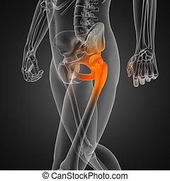 radiografia, umano, scansione