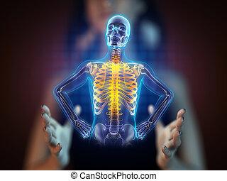 radiographie, hologramme, humain, balayage