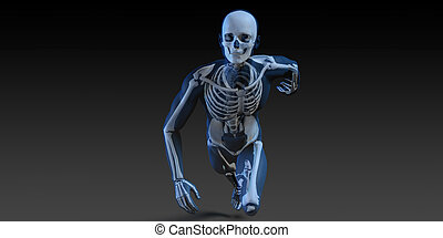 Radiography Scan with Bones