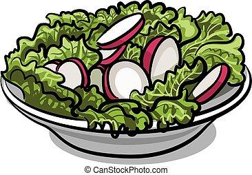 radis, frais, salade, salade verte