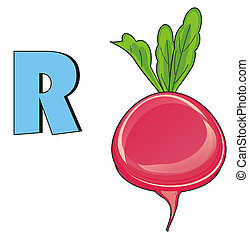 radish and letter r