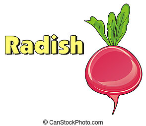 radish and letters