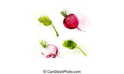 Radish entirely and in a cut - Animated Radish for the...