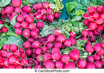 Radish for sale at a market