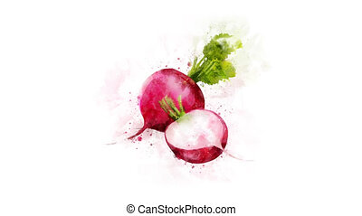 Radish for video decoration - An animated Radish drawing for...