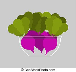 Radish in bowl. Fresh Vegetable Vector Illustration. Healthy eating concept. Vegetarianism